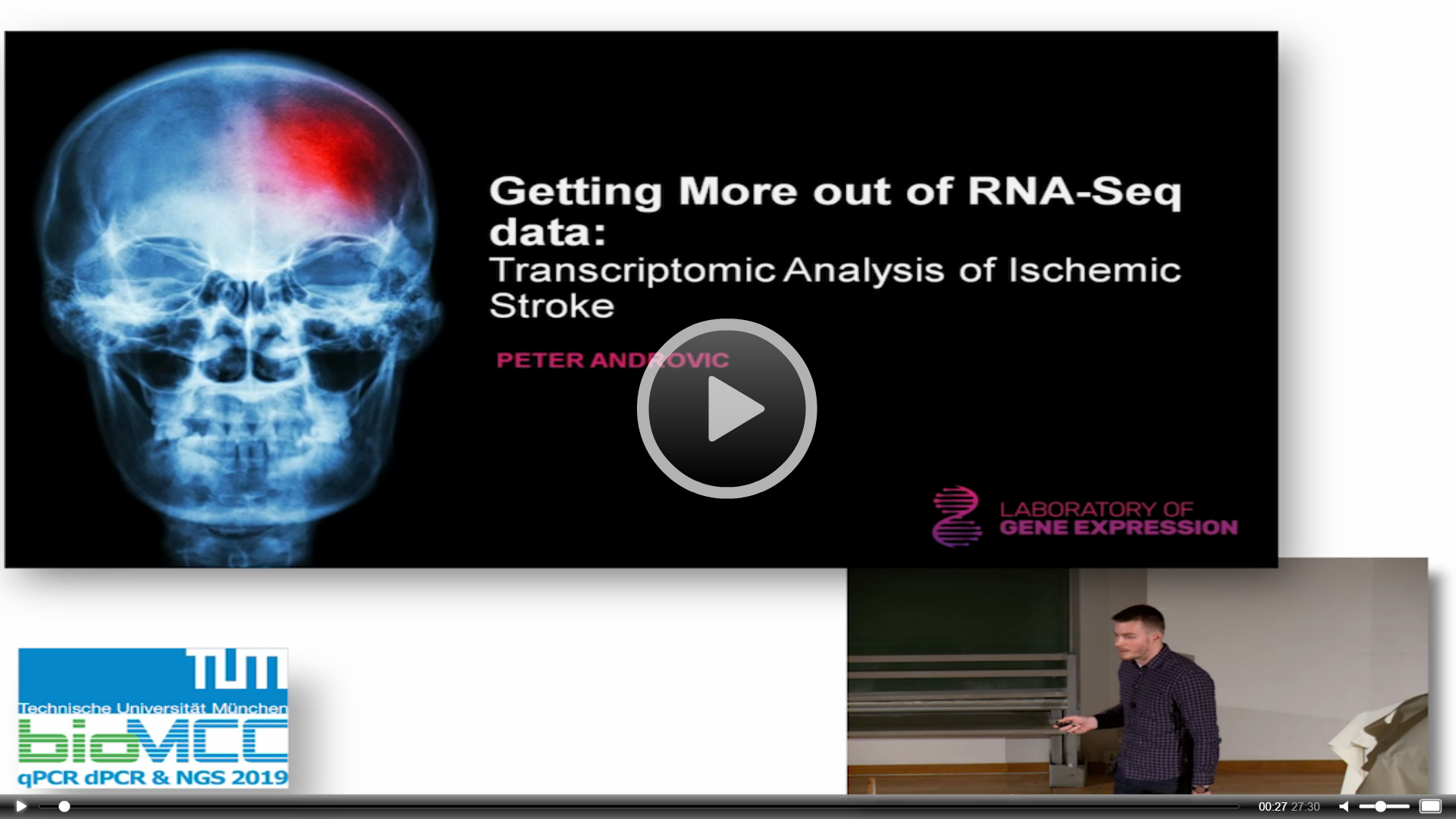 Getting More out of RNA-Seq Data: Transcriptomic Analysis of Ischemic Stroke